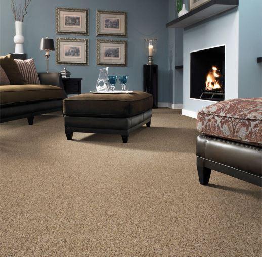 carpet-tuftex-moveonup